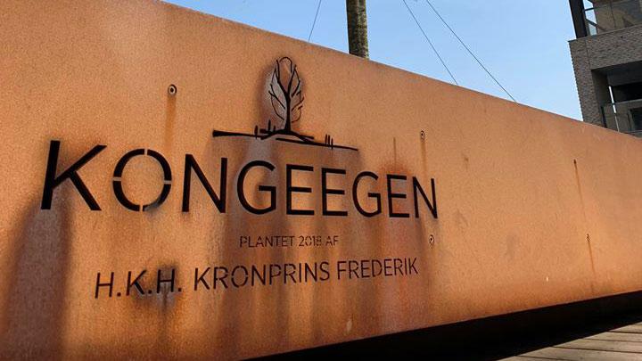 Kongeegen Aarhus