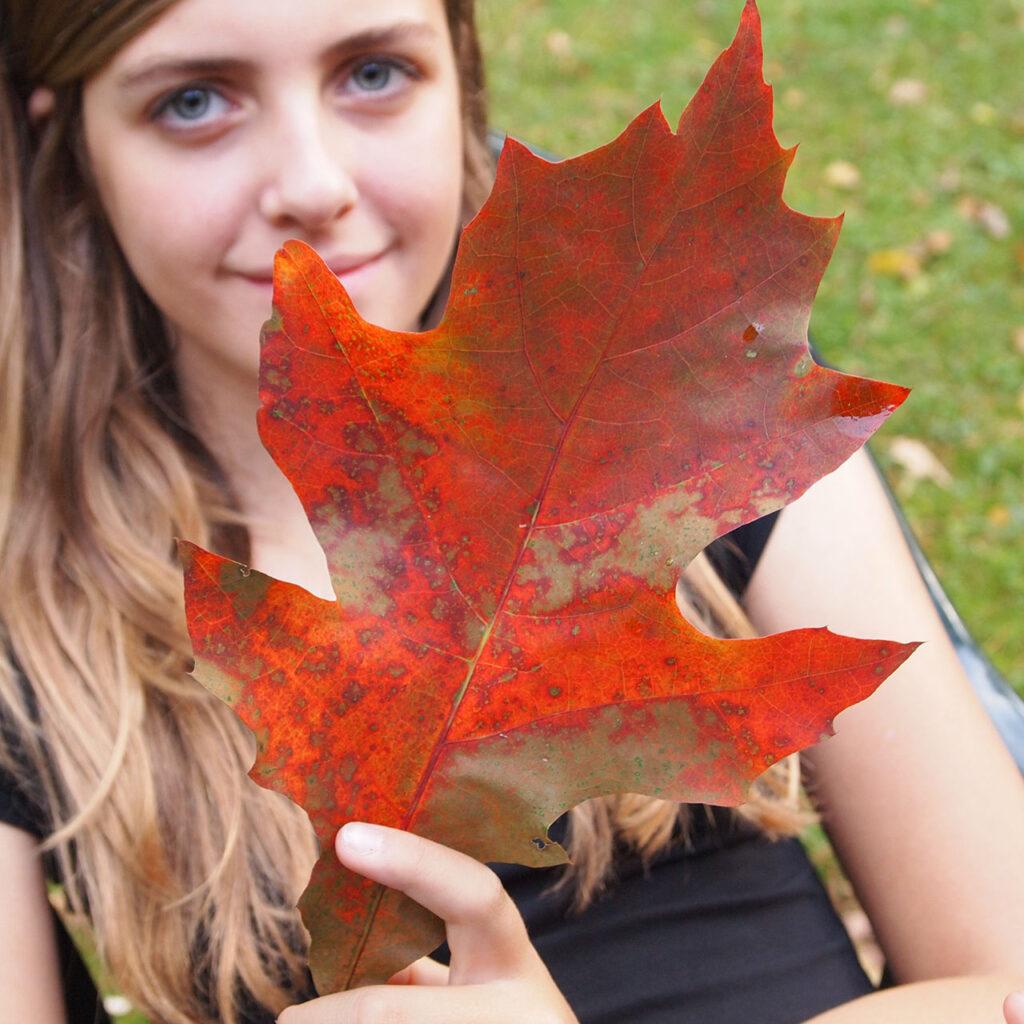 Pige med stort roedt blad