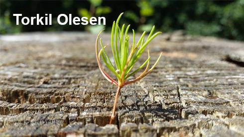 Sponsor Torkil Olesen