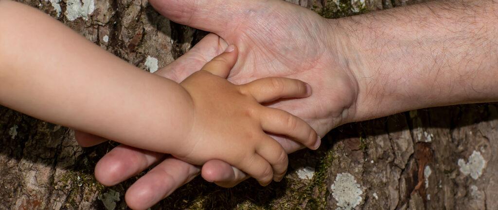 Generationstraer barnehaand voksenhaand