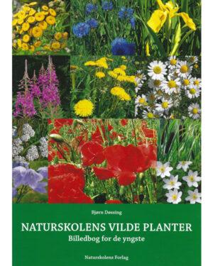 Naturskolens vilde planter 1
