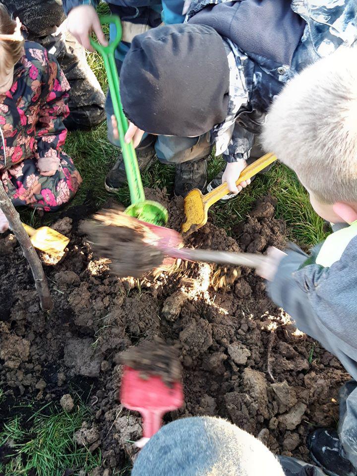 Plantning_Landal_Greenparks_Bollo_03