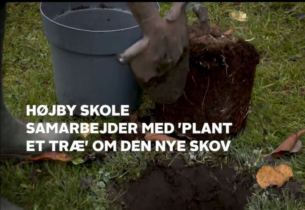 Nyhed_Hoejby-skole_plantning