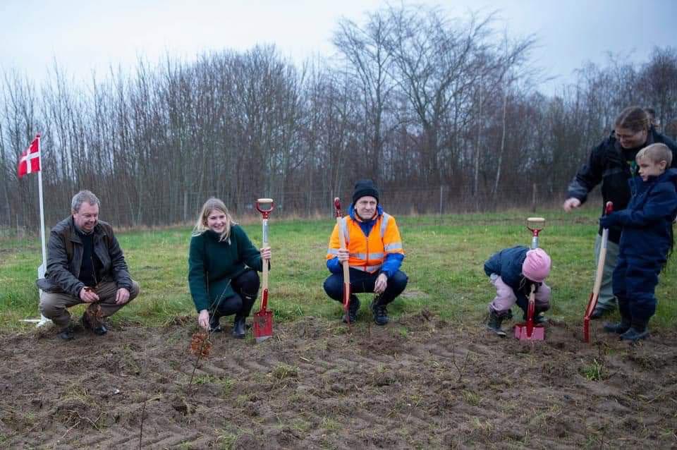 Undervisningsskov_Sjaelland_Vipperoed_plantning_04